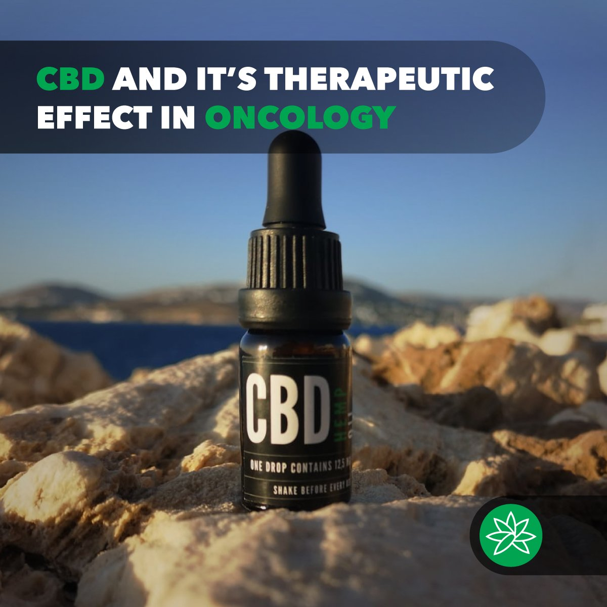 CBD and it's therapeutic effect in oncology