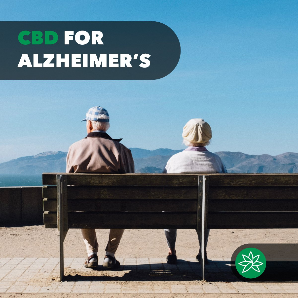 CBD for alzheimer's