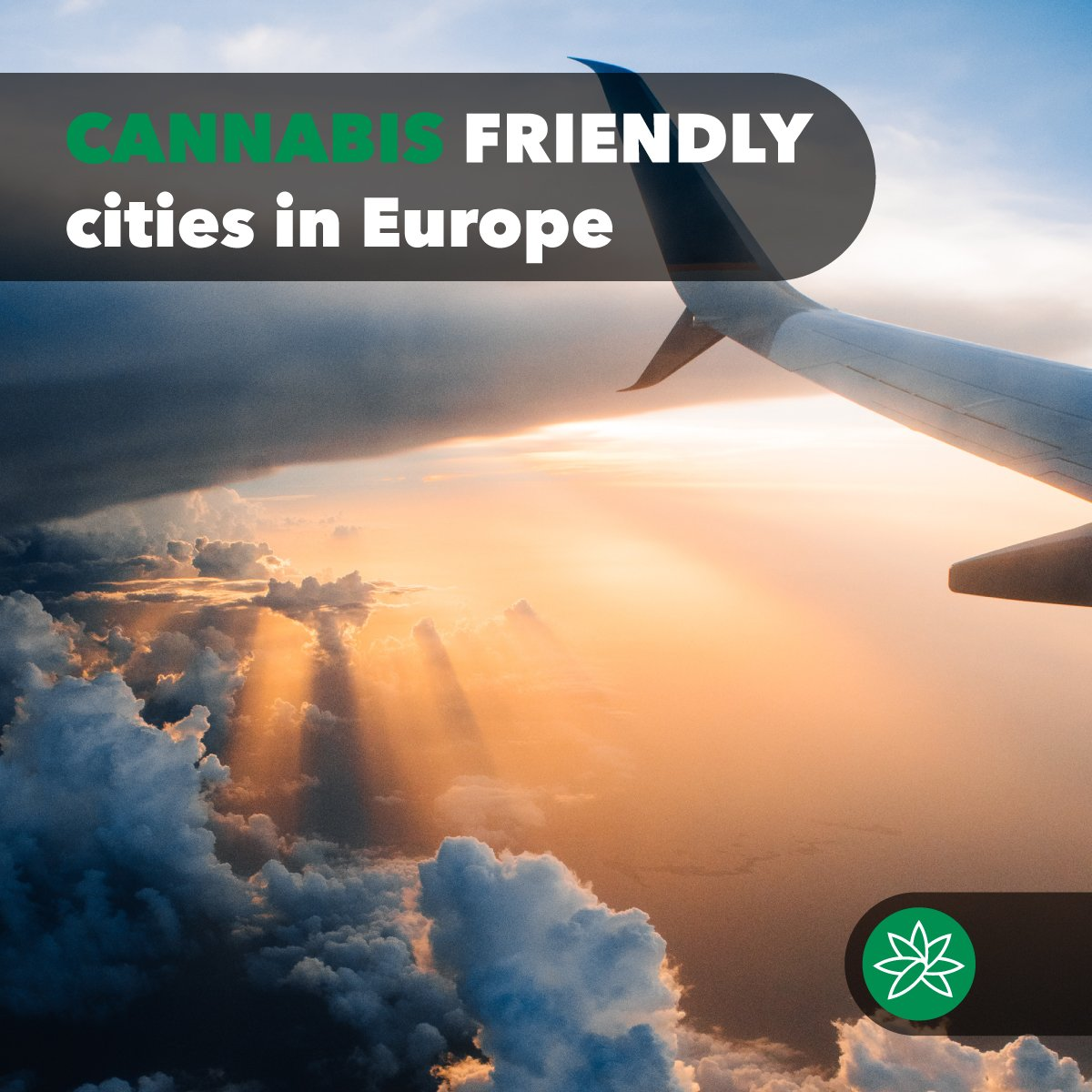 Cannabis friendly cities in Europe