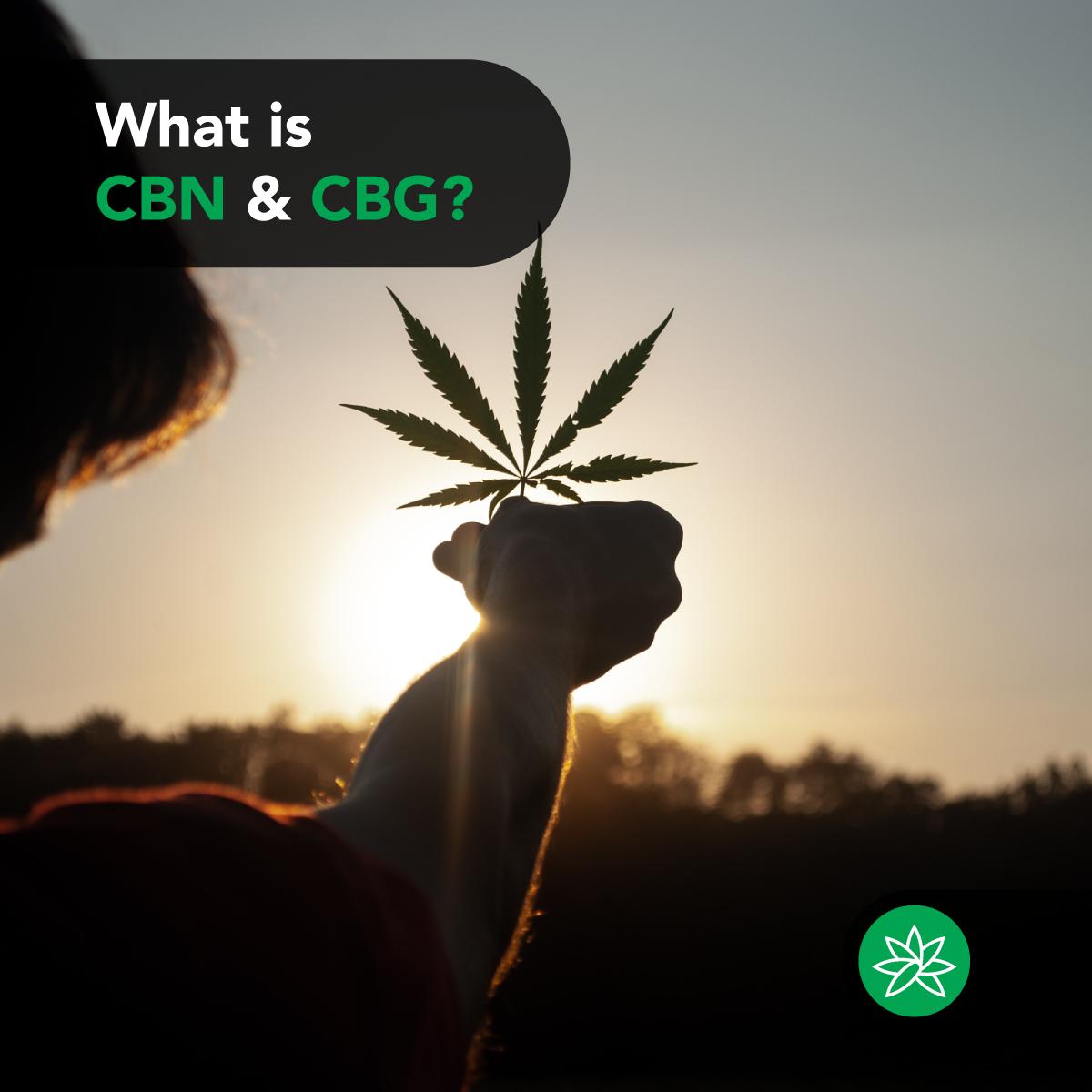 CBN & CBG